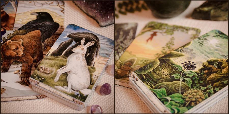 Oracles des Druides et des Plantes, Philip et Stephanie Carr-Gomm