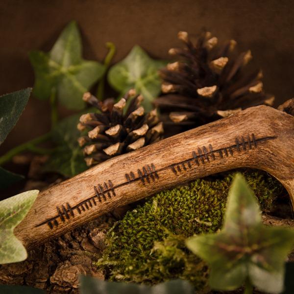 Suite d'oghams gravés sur une branche