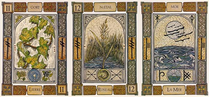 Le Lierre, Le Roseau et la Mer - Mes cartes préférées de l'Oracle Celte des Arbres
